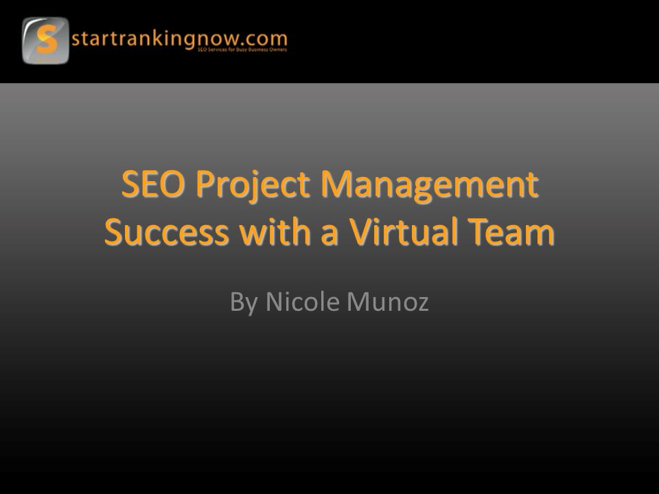 SEO Project Management Success with a Virtual Team By Nicole Munoz