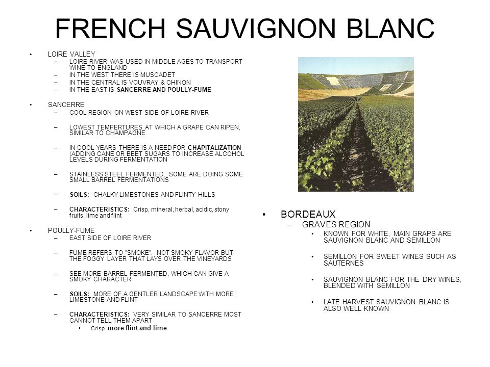 FRENCH SAUVIGNON BLANC LOIRE VALLEY –LOIRE RIVER WAS USED IN MIDDLE AGES TO TRANSPORT WINE TO ENGLAND –IN THE WEST THERE IS MUSCADET –IN THE CENTRAL IS VOUVRAY & CHINON –IN THE EAST IS SANCERRE AND POULLY-FUME SANCERRE –COOL REGION ON WEST SIDE OF LOIRE RIVER –LOWEST TEMPERTURES AT WHICH A GRAPE CAN RIPEN, SIMILAR TO CHAMPAGNE –IN COOL YEARS THERE IS A NEED FOR CHAPITALIZATION (ADDING CANE OR BEET SUGARS TO INCREASE ALCOHOL LEVELS DURING FERMENTATION –STAINLESS STEEL FERMENTED.
