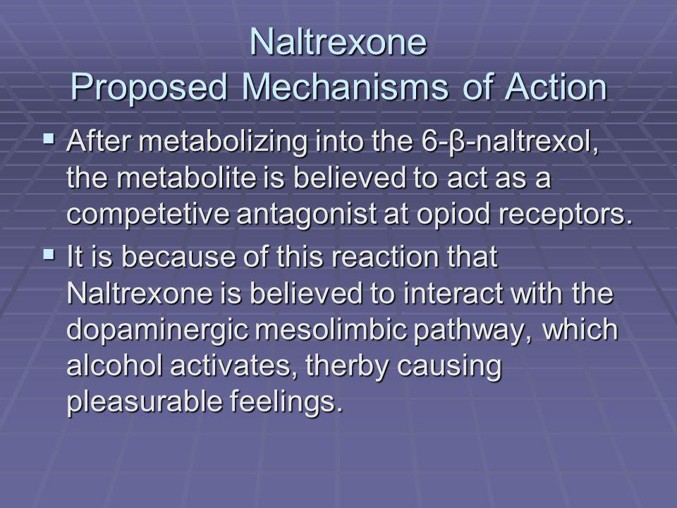 Naltrexone Proposed Mechanisms of Action After metabolizing into the 6-β-naltrexol, the metabolite is believed to act as a competetive antagonist at opiod receptors.