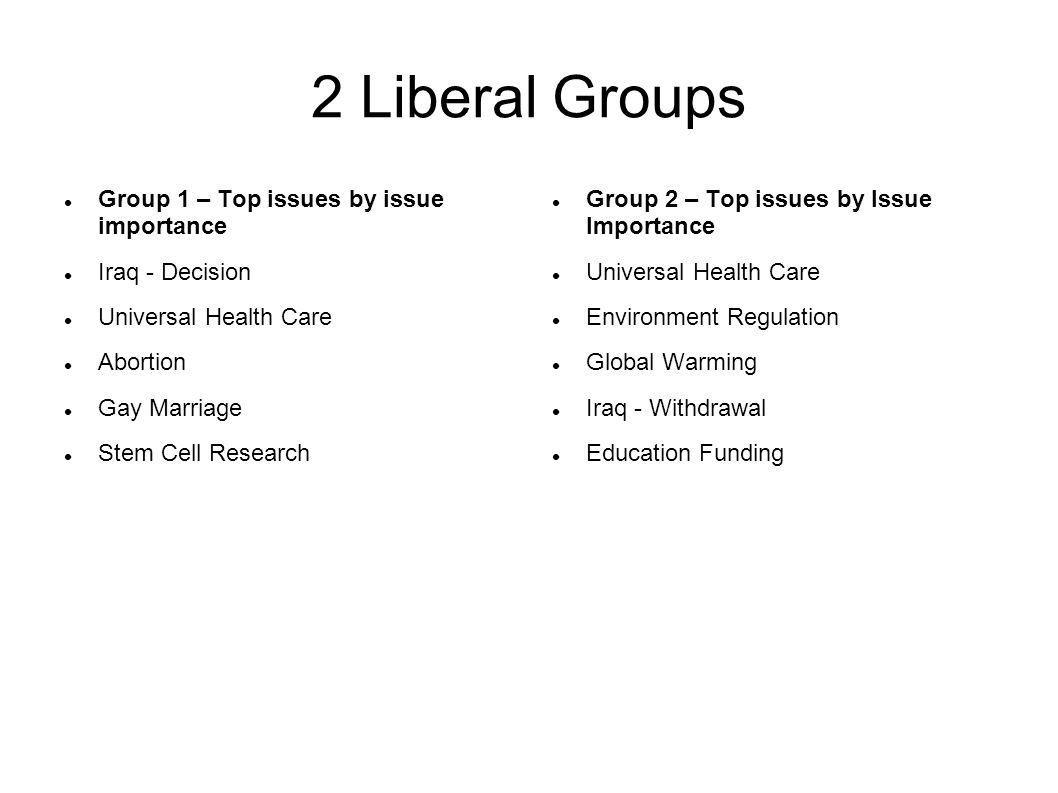 2 Liberal Groups Group 1 – Top issues by issue importance Iraq - Decision Universal Health Care Abortion Gay Marriage Stem Cell Research Group 2 – Top issues by Issue Importance Universal Health Care Environment Regulation Global Warming Iraq - Withdrawal Education Funding