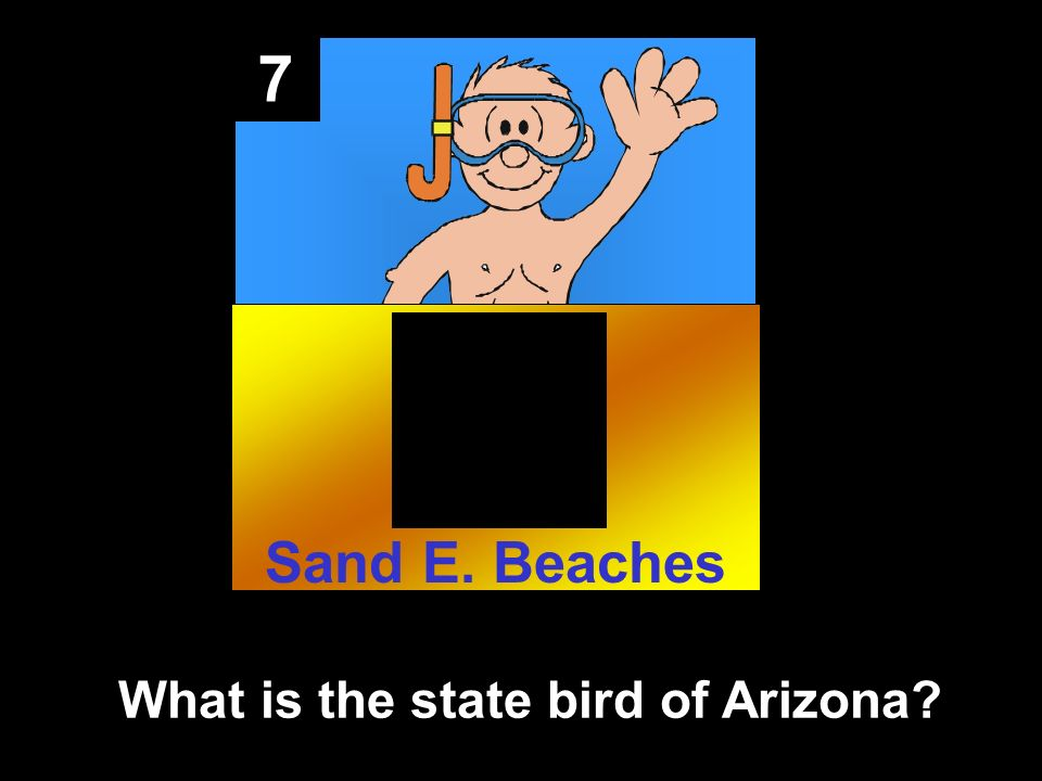 7 What is the state bird of Arizona Sand E. Beaches