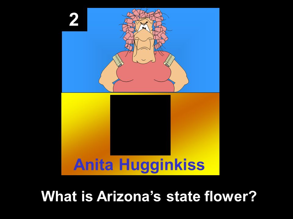 2 What is Arizonas state flower Anita Hugginkiss