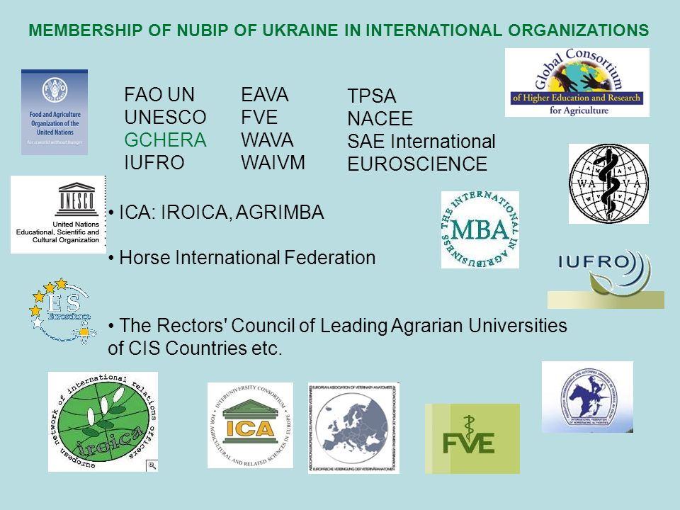 ІСА: IROICA, AGRIMBA Horse International Federation The Rectors Council of Leading Agrarian Universities of CIS Countries etc.