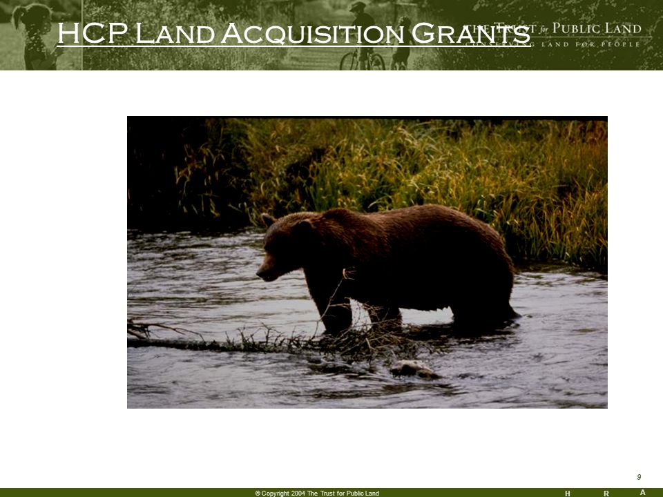 HR A 9 © Copyright 2004 The Trust for Public Land HCP Land Acquisition Grants