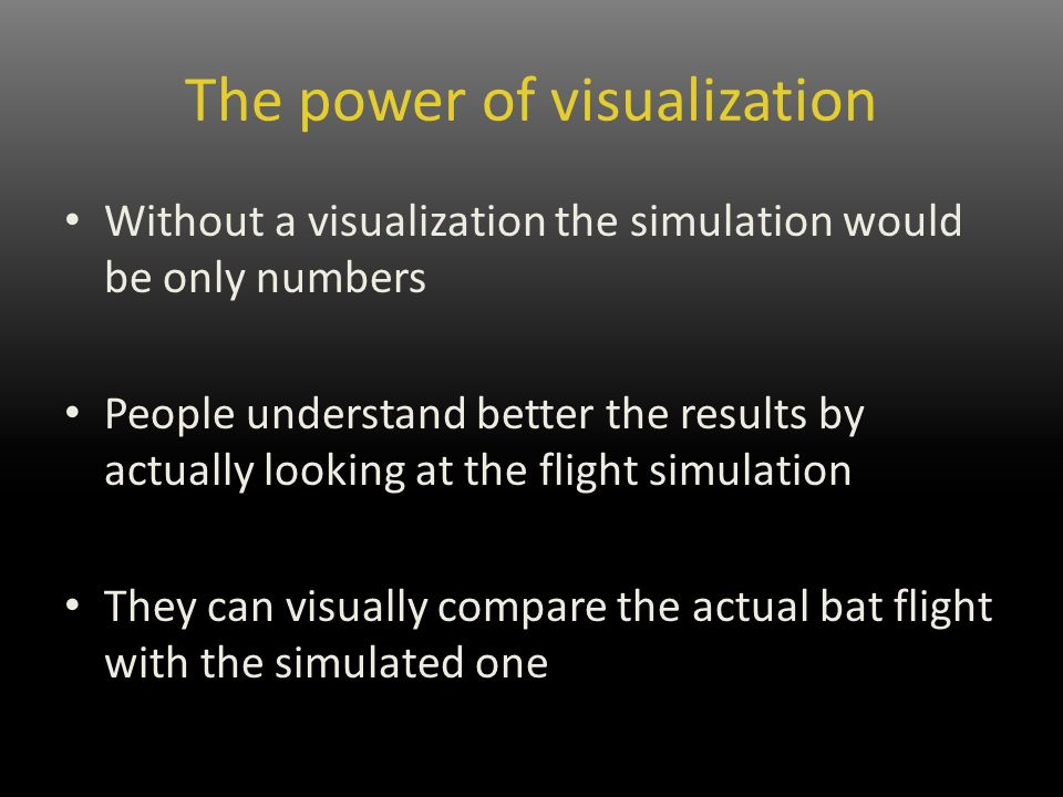 The power of visualization Without a visualization the simulation would be only numbers People understand better the results by actually looking at the flight simulation They can visually compare the actual bat flight with the simulated one