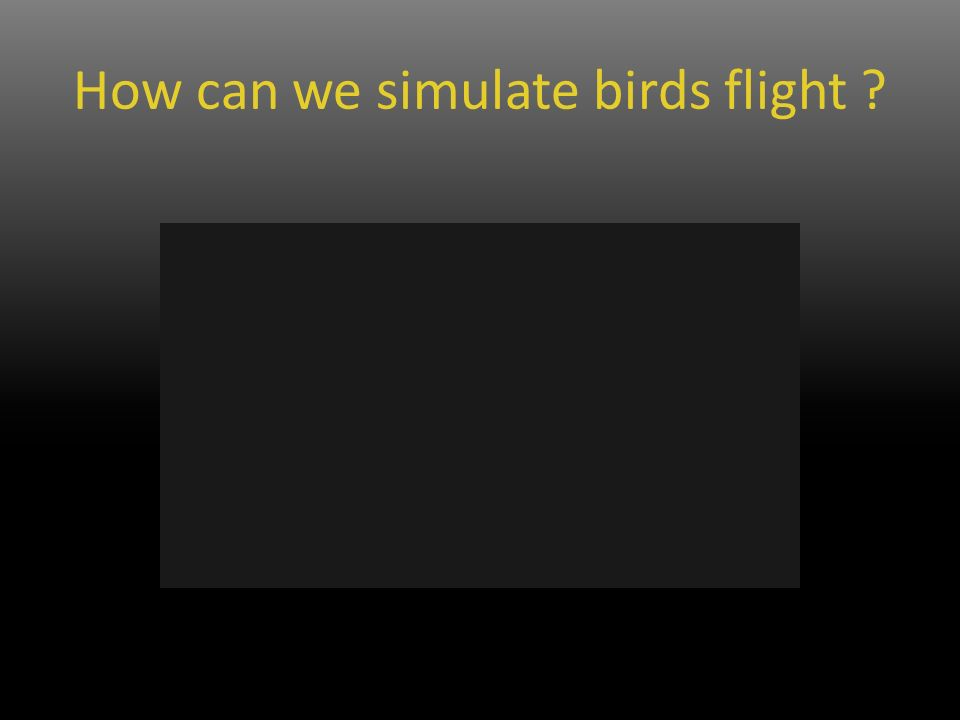 How can we simulate birds flight