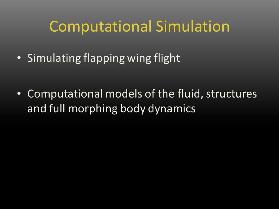 Computational Simulation Simulating flapping wing flight Computational models of the fluid, structures and full morphing body dynamics