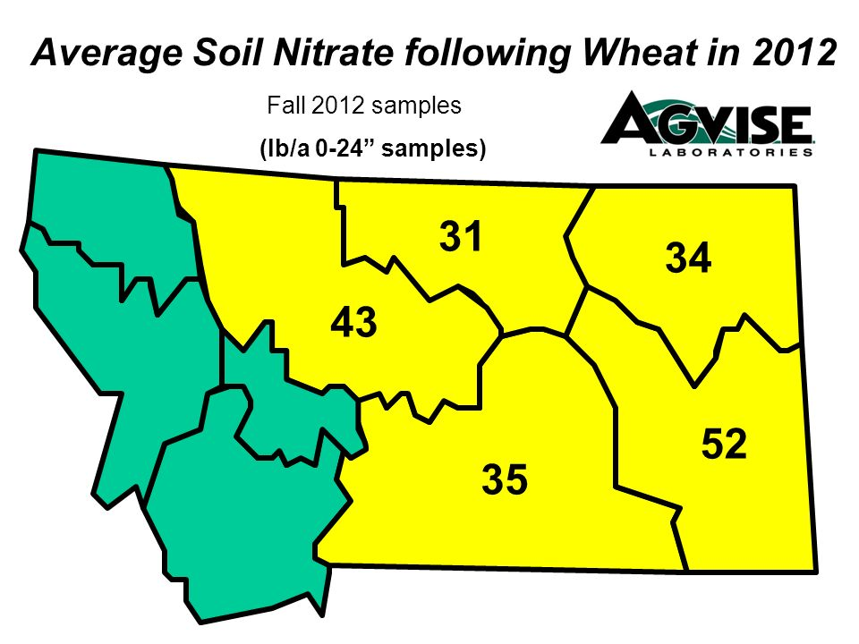 Fall 2012 samples Average Soil Nitrate following Wheat in 2012 (lb/a 0-24 samples) 35 43