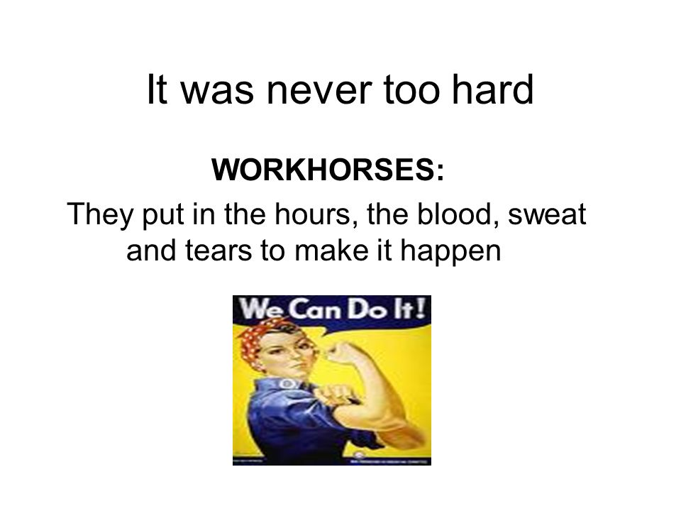 It was never too hard WORKHORSES: They put in the hours, the blood, sweat and tears to make it happen