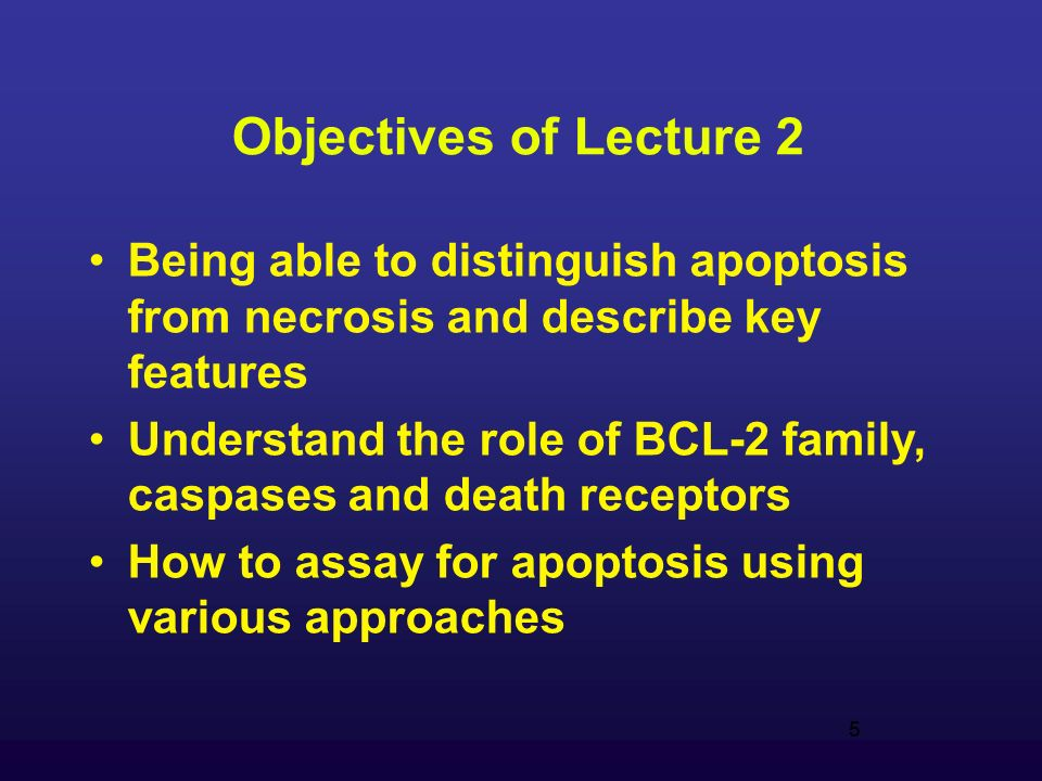 5 Objectives of Lecture 2 Being able to distinguish apoptosis from necrosis and describe key features Understand the role of BCL-2 family, caspases and death receptors How to assay for apoptosis using various approaches 5