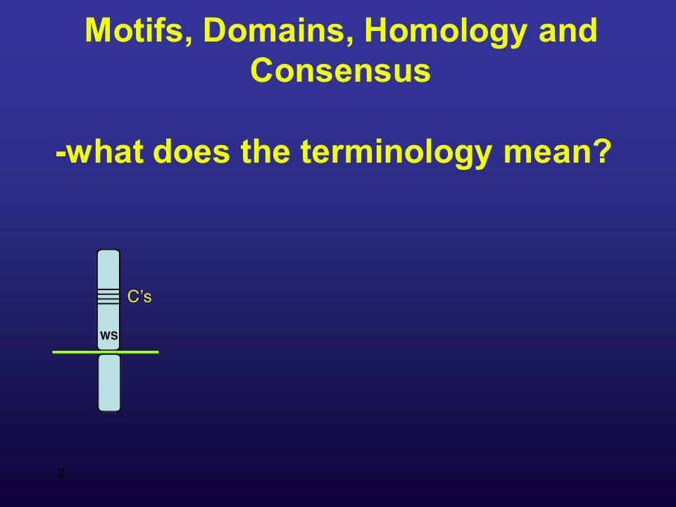 9 Motifs, Domains, Homology and Consensus -what does the terminology mean