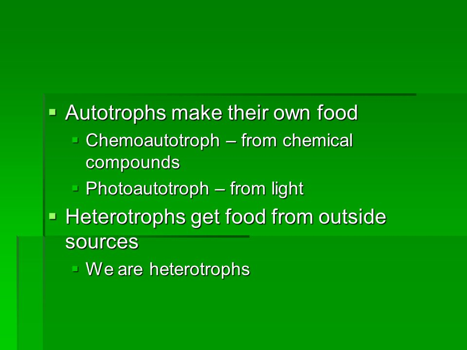 Autotrophs make their own food Autotrophs make their own food Chemoautotroph – from chemical compounds Chemoautotroph – from chemical compounds Photoautotroph – from light Photoautotroph – from light Heterotrophs get food from outside sources Heterotrophs get food from outside sources We are heterotrophs We are heterotrophs