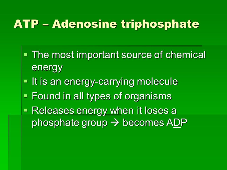 ATP – Adenosine triphosphate The most important source of chemical energy The most important source of chemical energy It is an energy-carrying molecule It is an energy-carrying molecule Found in all types of organisms Found in all types of organisms Releases energy when it loses a phosphate group becomes ADP Releases energy when it loses a phosphate group becomes ADP