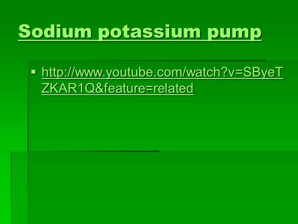 Sodium potassium pump Sodium potassium pump http://www.youtube.com/watch v=SByeT ZKAR1Q&feature=related http://www.youtube.com/watch v=SByeT ZKAR1Q&feature=related http://www.youtube.com/watch v=SByeT ZKAR1Q&feature=related http://www.youtube.com/watch v=SByeT ZKAR1Q&feature=related
