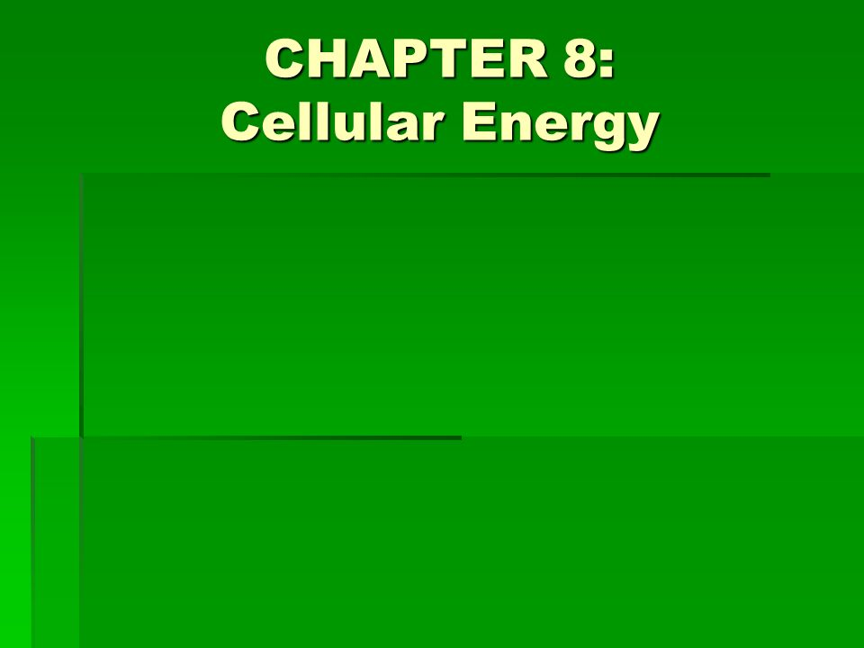 CHAPTER 8: Cellular Energy
