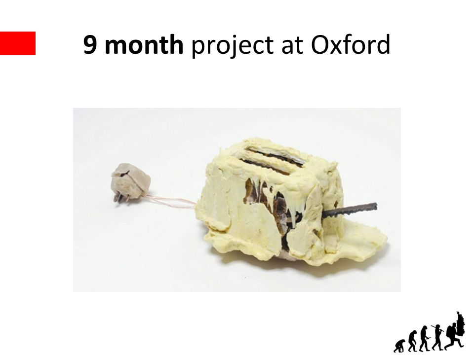 9 month project at Oxford