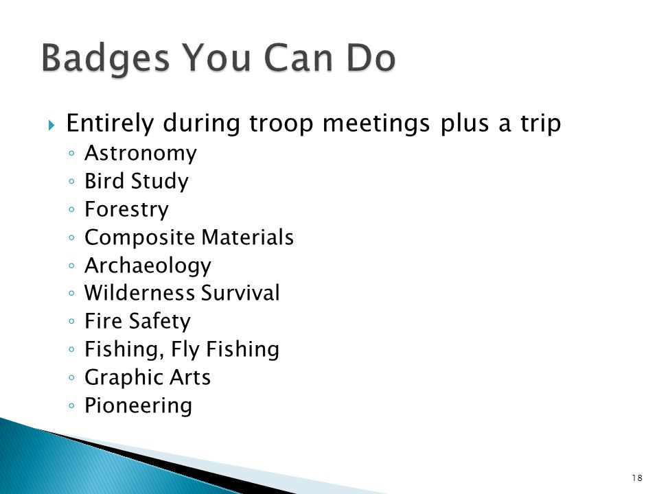 Entirely during troop meetings plus a trip Astronomy Bird Study Forestry Composite Materials Archaeology Wilderness Survival Fire Safety Fishing, Fly Fishing Graphic Arts Pioneering 18