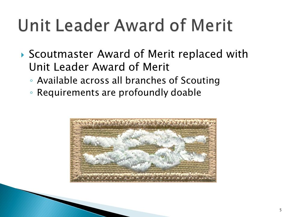Scoutmaster Award of Merit replaced with Unit Leader Award of Merit Available across all branches of Scouting Requirements are profoundly doable 5