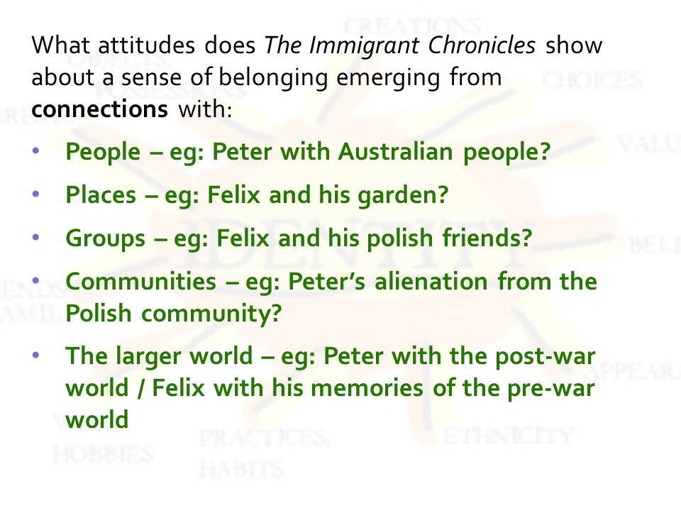 What attitudes does The Immigrant Chronicles show about a sense of belonging emerging from connections with: People – eg: Peter with Australian people.