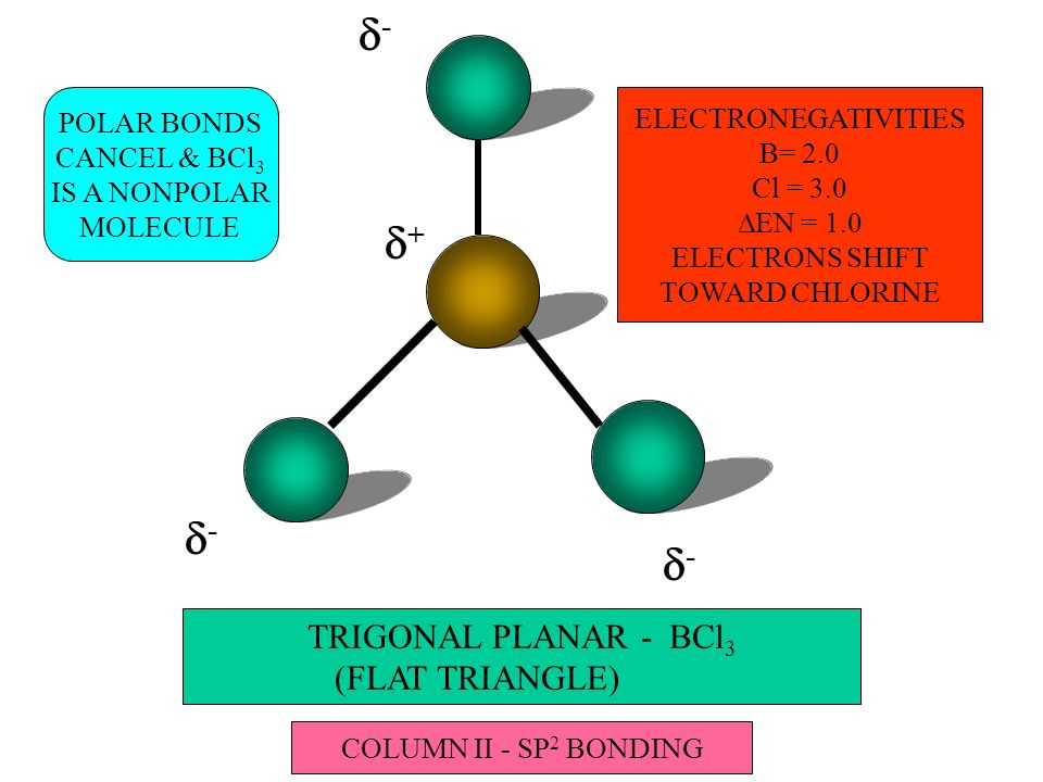 TRIGONAL PLANAR - BCl 3 (FLAT TRIANGLE) - + ELECTRONEGATIVITIES B= 2.0 Cl = 3.0 EN = 1.0 ELECTRONS SHIFT TOWARD CHLORINE - - POLAR BONDS CANCEL & BCl 3 IS A NONPOLAR MOLECULE COLUMN II - SP 2 BONDING
