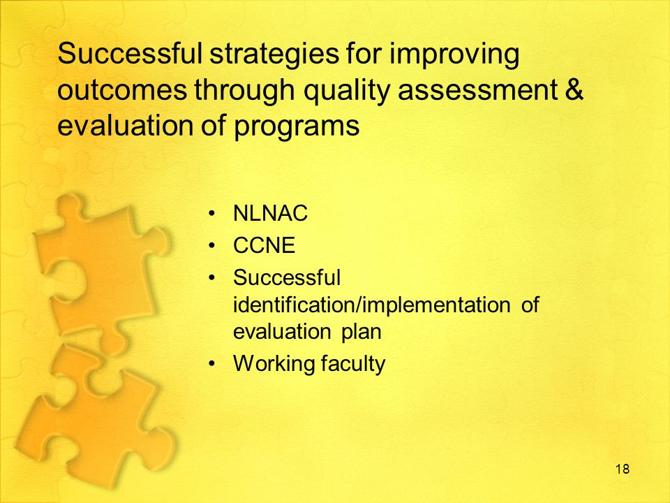Successful strategies for improving outcomes through quality assessment & evaluation of programs NLNAC CCNE Successful identification/implementation of evaluation plan Working faculty 18