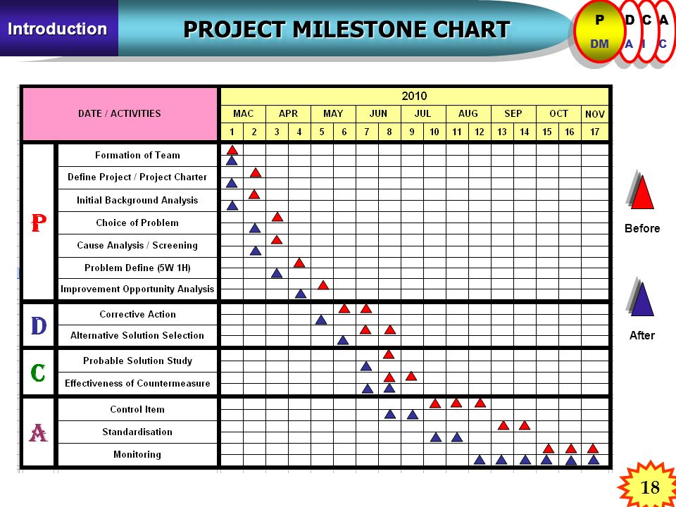 PROJECT MILESTONE CHART PROJECT MILESTONE CHART Introduction ACAC ACAC CICI CICI DADA DADA P DM P DM Before After 18