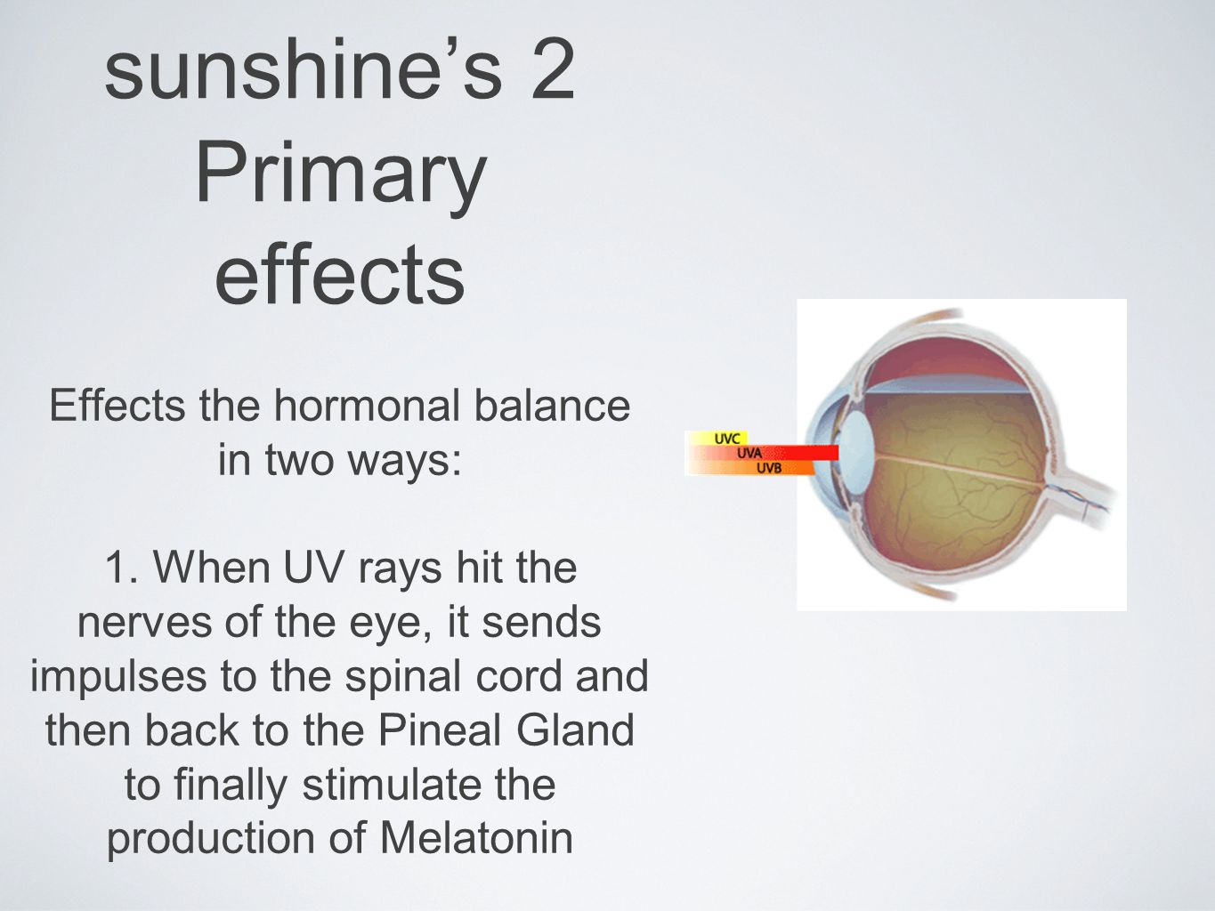 sunshines 2 Primary effects Effects the hormonal balance in two ways: 1.