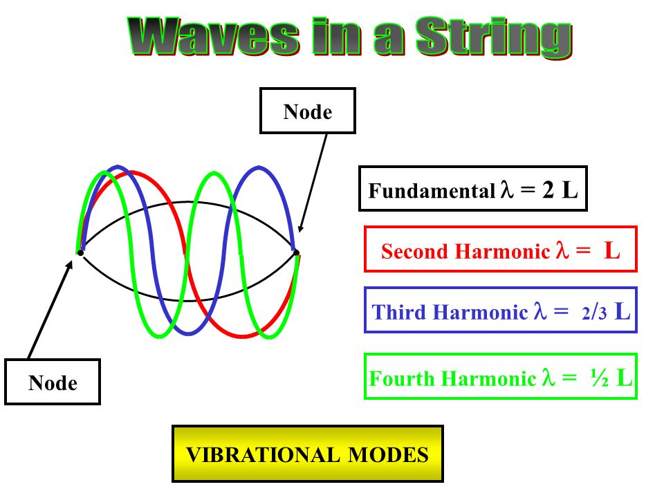 Fundamental = 2 L Second Harmonic = L Third Harmonic = 2 / 3 L Fourth Harmonic = ½ L Node VIBRATIONAL MODES