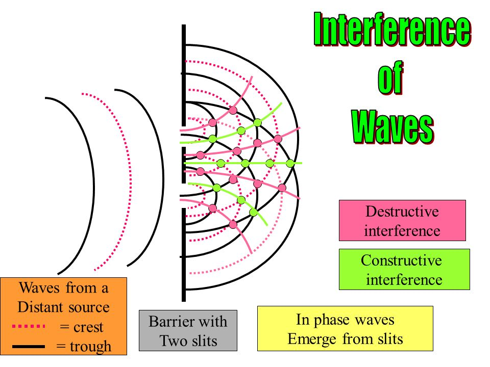 Waves from a Distant source = crest = trough Barrier with Two slits In phase waves Emerge from slits Constructive interference Destructive interference