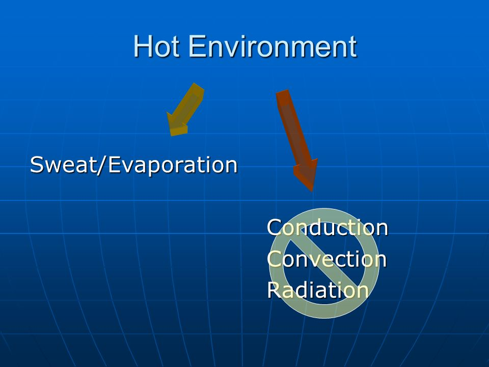 Hot Environment Sweat/Evaporation Conduction Convection Radiation