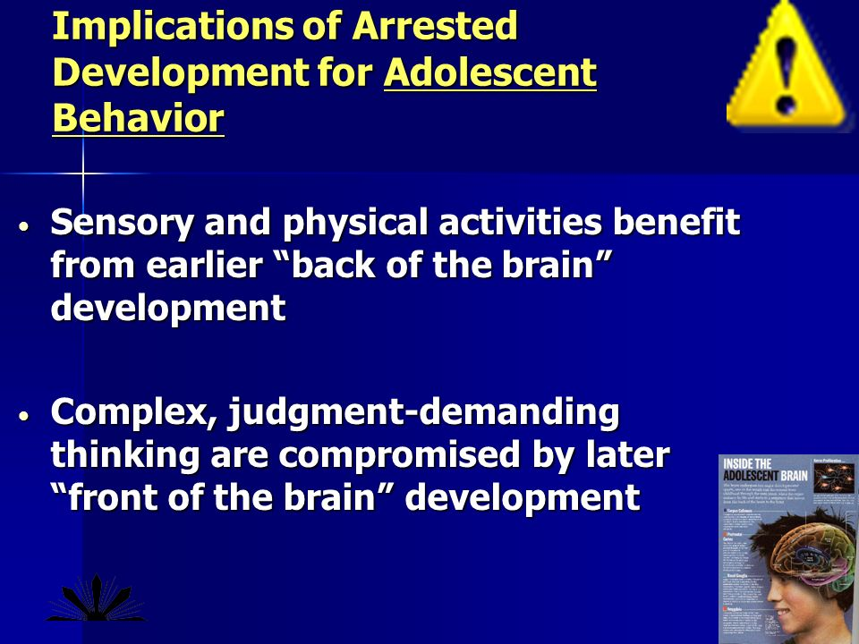 Sensory and physical activities benefit from earlier back of the brain development Sensory and physical activities benefit from earlier back of the brain development Complex, judgment-demanding thinking are compromised by later front of the brain development Complex, judgment-demanding thinking are compromised by later front of the brain development Implications of Arrested Development for Adolescent Behavior