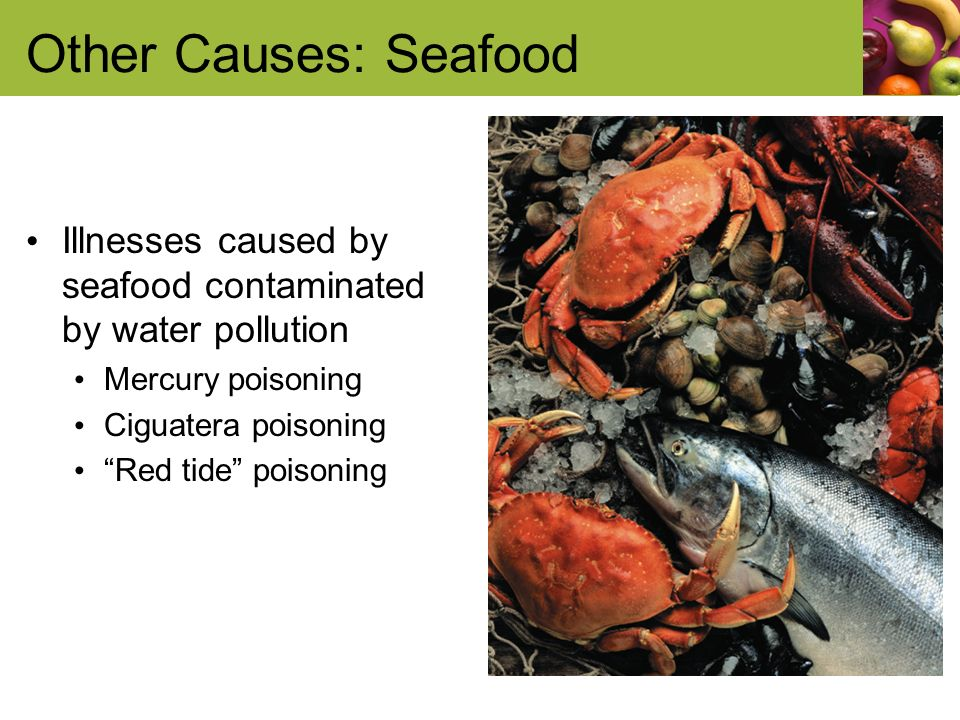Other Causes: Seafood Illnesses caused by seafood contaminated by water pollution Mercury poisoning Ciguatera poisoning Red tide poisoning