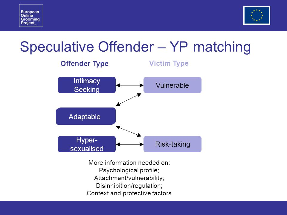 Speculative Offender – YP matching Intimacy Seeking Hyper- sexualised Vulnerable Risk-taking Victim Type More information needed on: Psychological profile; Attachment/vulnerability; Disinhibition/regulation; Context and protective factors Adaptable Offender Type