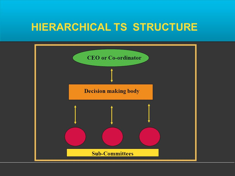 HIERARCHICAL TS STRUCTURE CEO or Co-ordinator Sub-Committees Decision making body