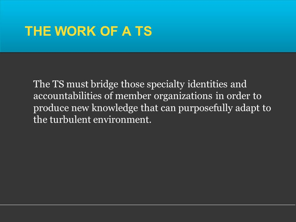 THE WORK OF A TS The TS must bridge those specialty identities and accountabilities of member organizations in order to produce new knowledge that can purposefully adapt to the turbulent environment.