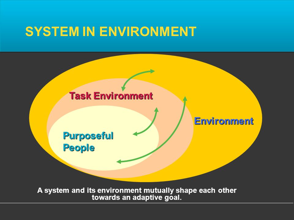 PurposefulPeople Environment SYSTEM IN ENVIRONMENT A system and its environment mutually shape each other towards an adaptive goal.