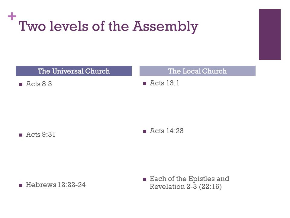 + Two levels of the Assembly The Universal Church Acts 8:3 Acts 9:31 Hebrews 12:22-24 The Local Church Acts 13:1 Acts 14:23 Each of the Epistles and Revelation 2-3 (22:16)