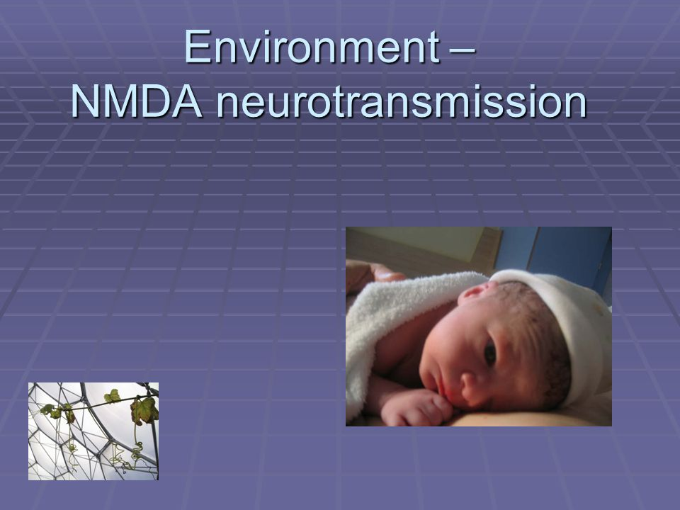 Environment – NMDA neurotransmission