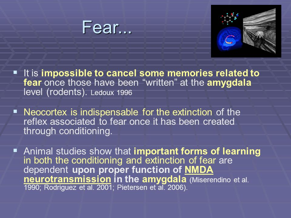 It is impossible to cancel some memories related to fear once those have been written at the amygdala level (rodents).