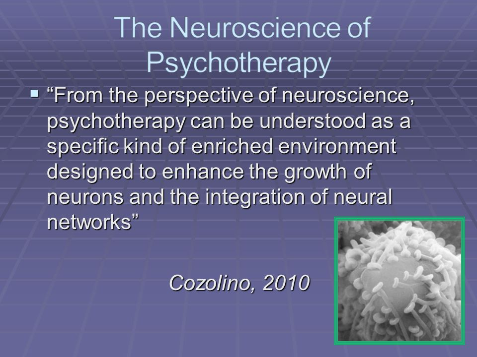 From the perspective of neuroscience, psychotherapy can be understood as a specific kind of enriched environment designed to enhance the growth of neurons and the integration of neural networks From the perspective of neuroscience, psychotherapy can be understood as a specific kind of enriched environment designed to enhance the growth of neurons and the integration of neural networks Cozolino, 2010