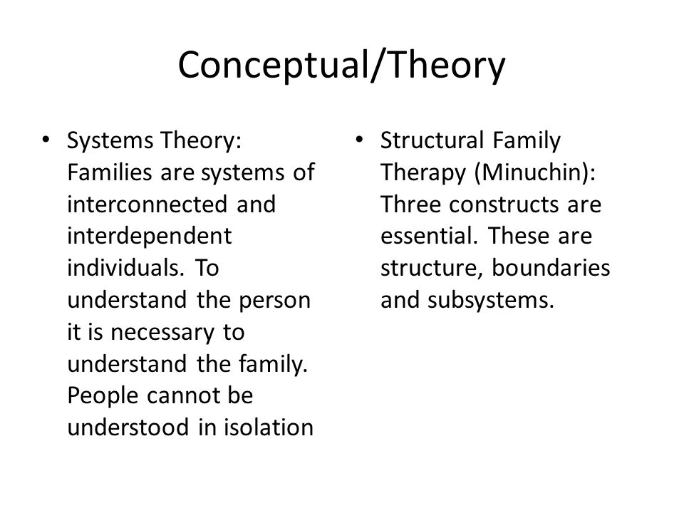 Conceptual/Theory Systems Theory: Families are systems of interconnected and interdependent individuals.