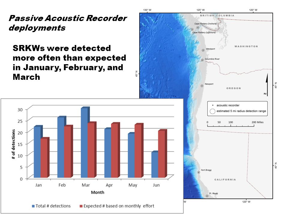 SRKWs were detected more often than expected off the Columbia River Passive Acoustic Recorder deployments