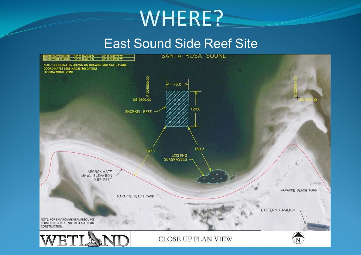 WHERE East Sound Side Reef Site