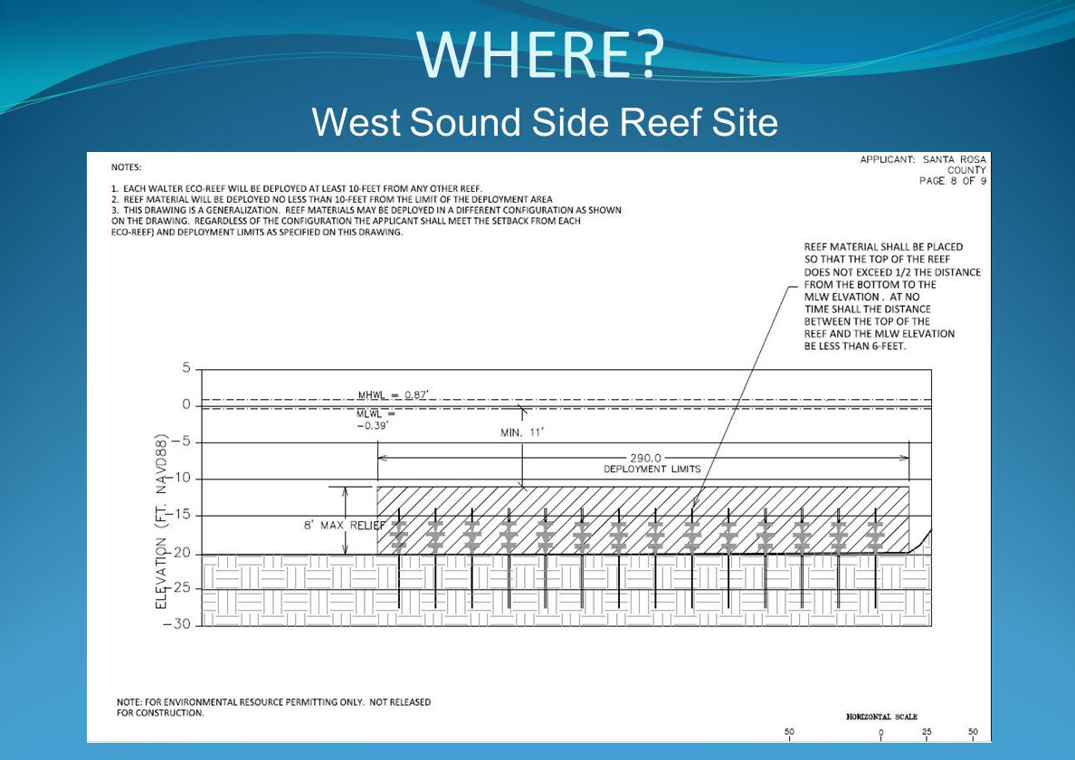 WHERE West Sound Side Reef Site