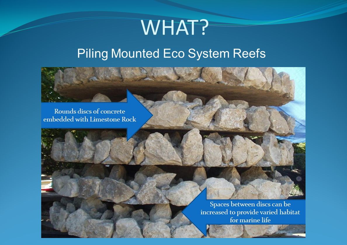 WHAT Piling Mounted Eco System Reefs