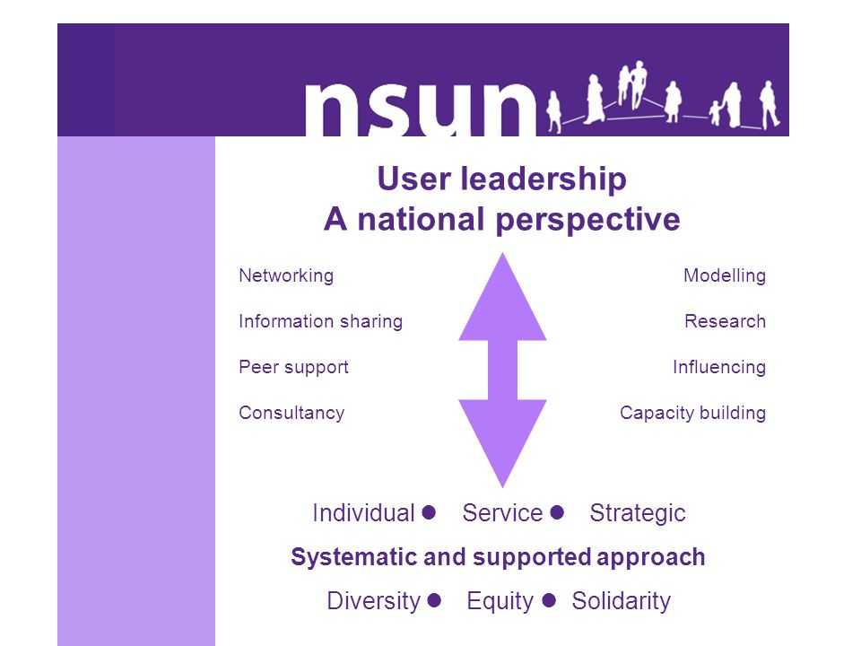 User leadership A national perspective Individual Service Strategic Systematic and supported approach Diversity Equity Solidarity Networking Information sharing Peer support Consultancy Modelling Research Influencing Capacity building