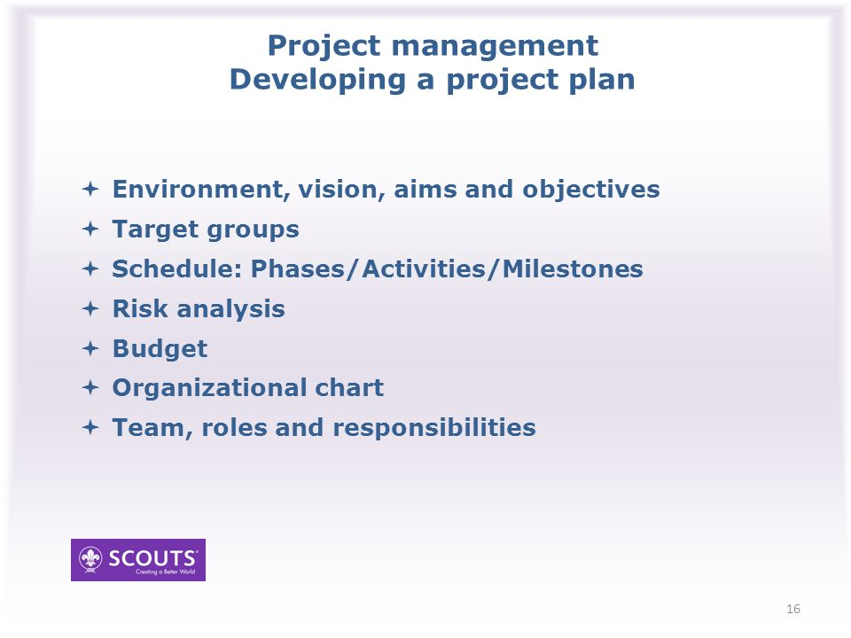 Project management Developing a project plan Environment, vision, aims and objectives Target groups Schedule: Phases/Activities/Milestones Risk analysis Budget Organizational chart Team, roles and responsibilities 16