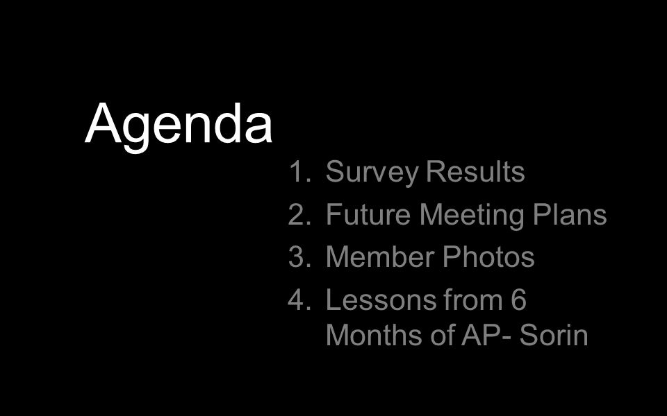 Agenda 1.Survey Results 2.Future Meeting Plans 3.Member Photos 4.Lessons from 6 Months of AP- Sorin
