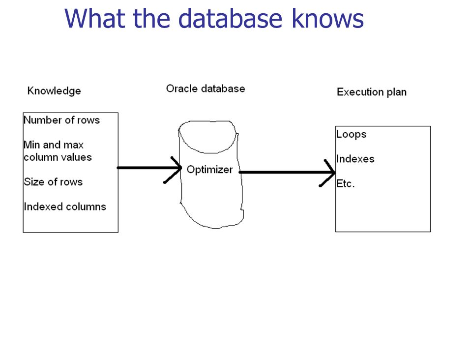 What the database knows
