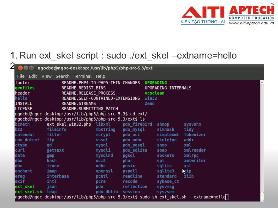 1.Run ext_skel script : sudo./ext_skel –extname=hello 2.
